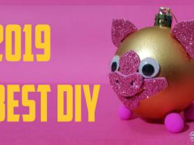 DIY pig trend 2019 new year by Devlin Fox